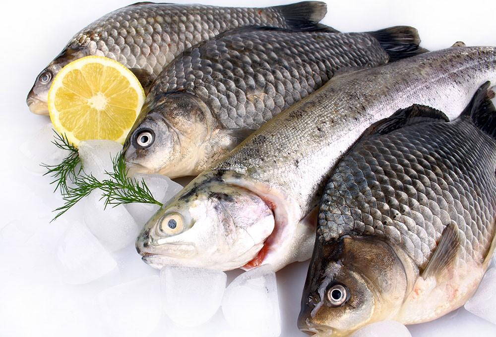 How to select buy and cook fish the right way for How to cook a fish