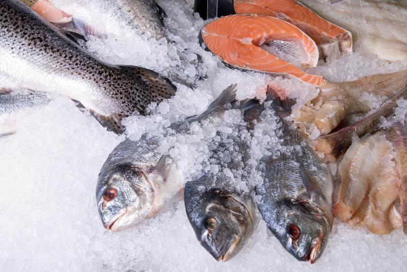 Замороженная рыба свежесть