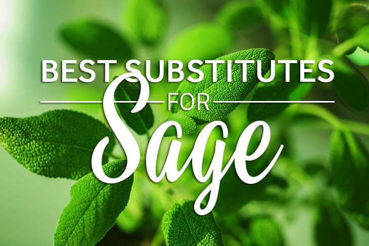 substitute for sage
