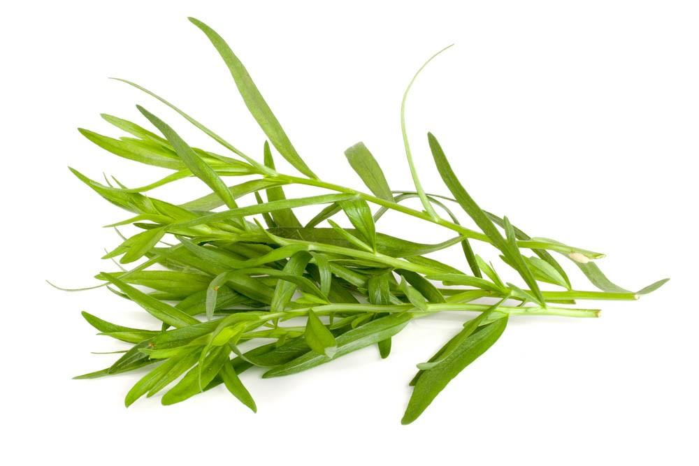 https://www.shutterstock.com/fr/image-photo/chopped-fresh-dill-on-cutting-board-673632799?src=5LgfH7X9FSPutYgxz06VnQ-1-9